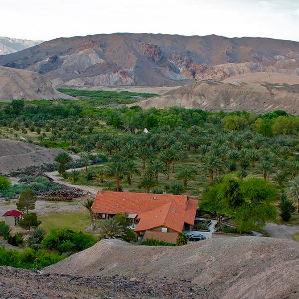 china ranch date farm Getaway Guide: One Tank Trip to Death Valley ...