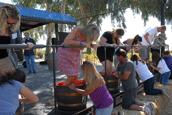 Things to do in Pahrump - grape stomp
